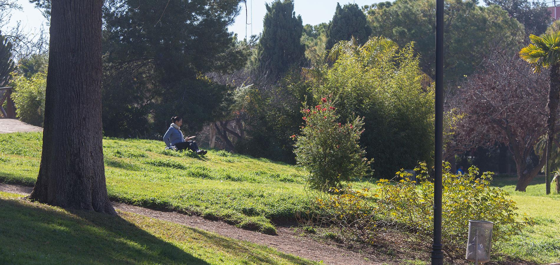 09-Entorno-Parque-Nordes